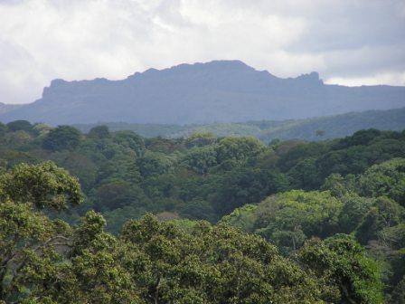 Mt. Elgon